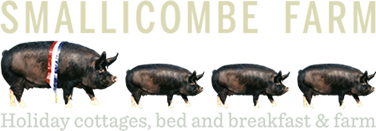 Smallicombe Farm Holidays